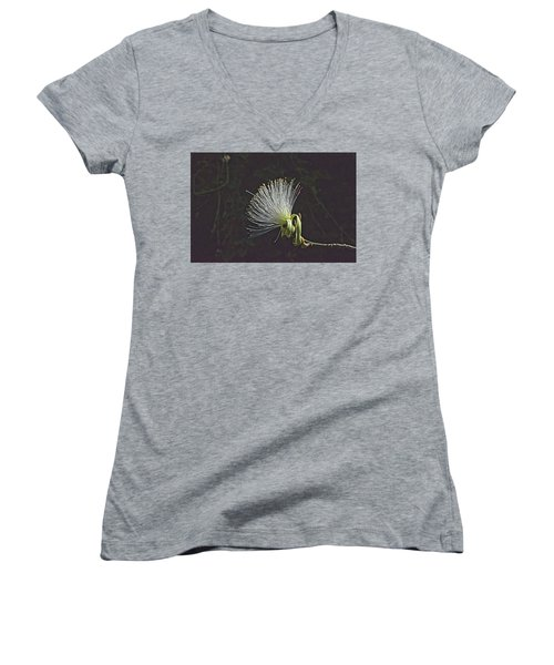 White Shaving Brush Pseudobombax Flower Women's V-Neck (Athletic Fit)