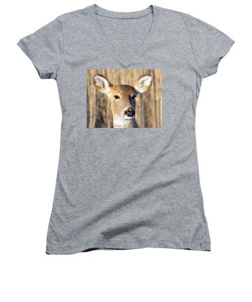 White-tailed Deer Women's V-Neck T-Shirt