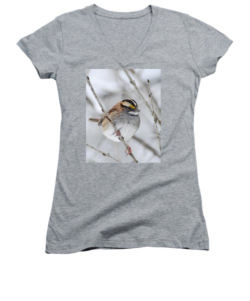 White Throated Sparrow Women's V-Neck (Athletic Fit)