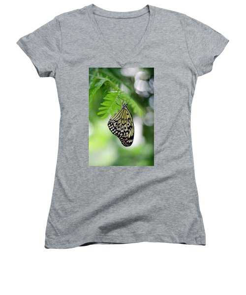 White Tree Nymph Butterfly 2 Women's V-Neck T-Shirt (Junior Cut) by Marie Hicks
