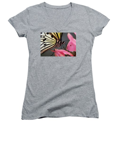 White Tree Nymph Butterfly Women's V-Neck