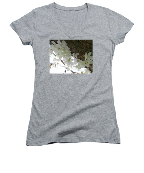 Dogwood Branch Women's V-Neck