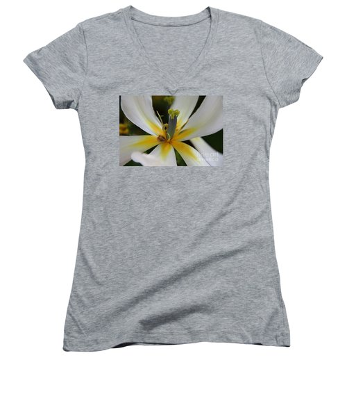 Women's V-Neck T-Shirt (Junior Cut) featuring the photograph White Tulip by Jolanta Anna Karolska