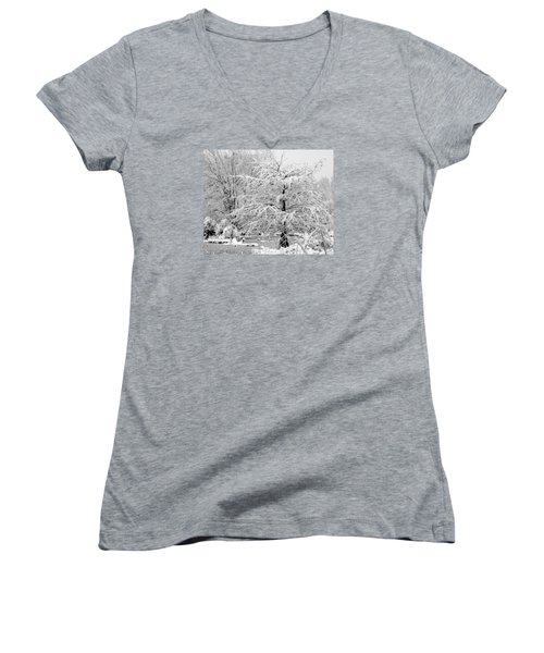 Whiteout In The Wetlands Women's V-Neck T-Shirt (Junior Cut) by John Harding