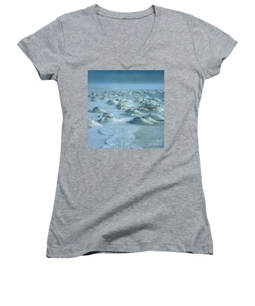 Whooper Swans In Snow Women's V-Neck T-Shirt