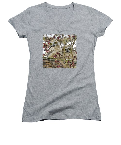 Wide-eyed Wonders Women's V-Neck T-Shirt (Junior Cut) by Dee Cresswell