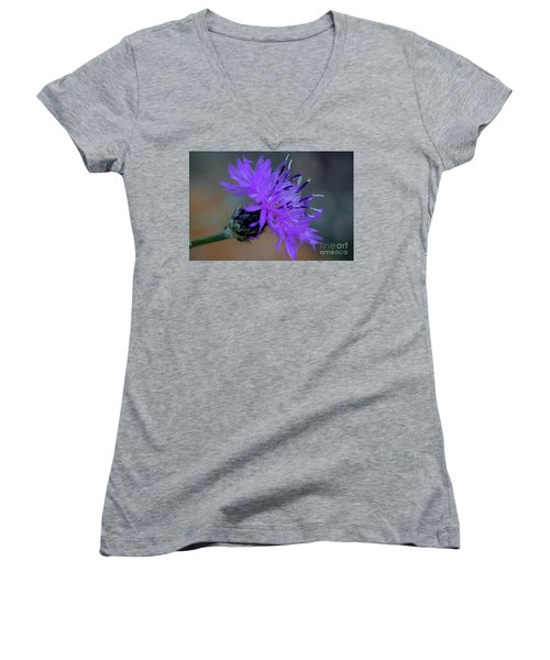 Wild And Beautiful 32 Women's V-Neck T-Shirt