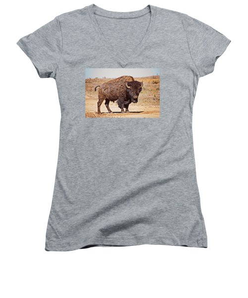 Wild Bison Women's V-Neck T-Shirt