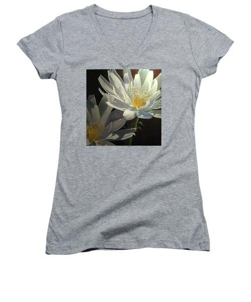 Wild Desert Chickory Women's V-Neck T-Shirt