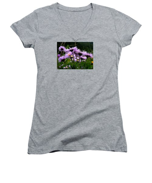 Wild Mountain Asters Women's V-Neck T-Shirt