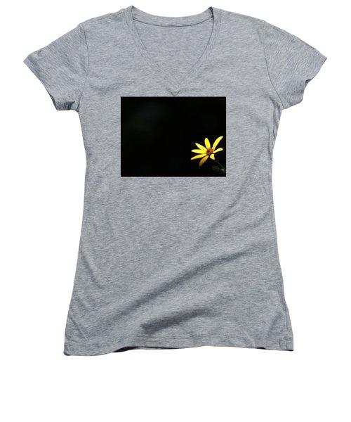 Wild Sunflower Stony Brook New York Women's V-Neck T-Shirt (Junior Cut) by Bob Savage