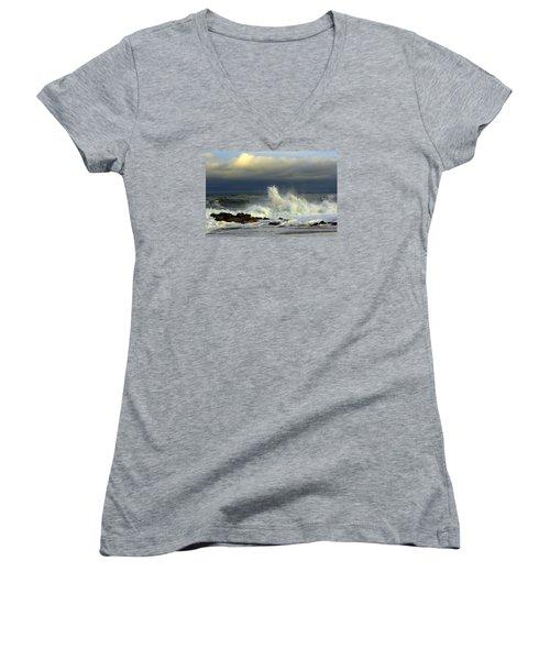 Wild Waves Women's V-Neck T-Shirt