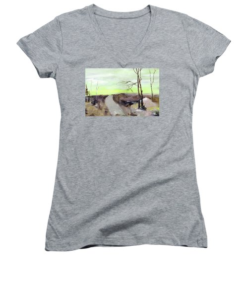 Women's V-Neck T-Shirt (Junior Cut) featuring the painting Wilderness 2 by Anil Nene