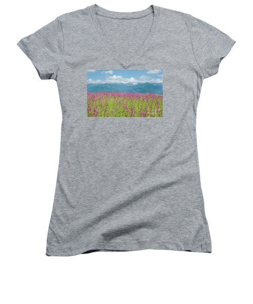 Wildflower Meadows And The Carpathian Mountains, Romania Women's V-Neck T-Shirt