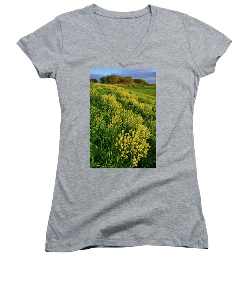 Wildflowers In Glacial Park Of Mccd Women's V-Neck (Athletic Fit)