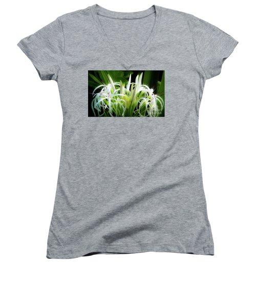 Wildflowers Of Hawaii Women's V-Neck