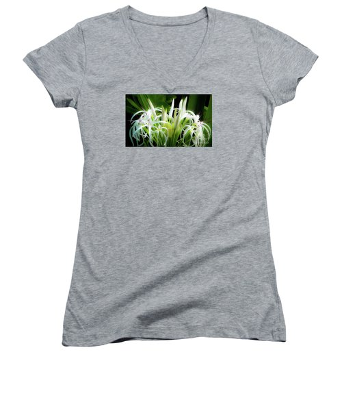 Wildflowers Of Hawaii Women's V-Neck