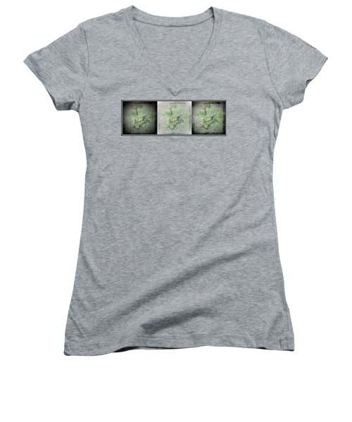 Wildlife In A Storm Women's V-Neck (Athletic Fit)