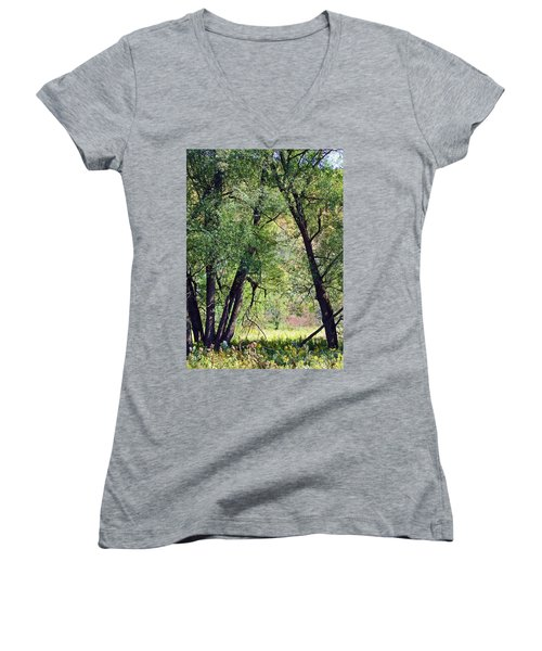 Willow Cathedral Women's V-Neck T-Shirt