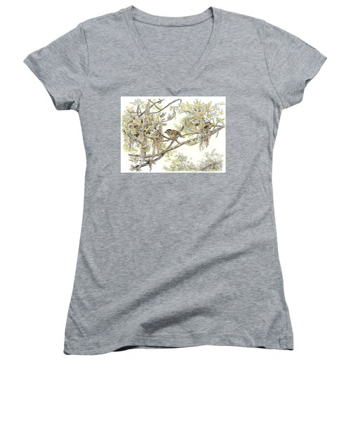 Wilson's Warbler Women's V-Neck (Athletic Fit)