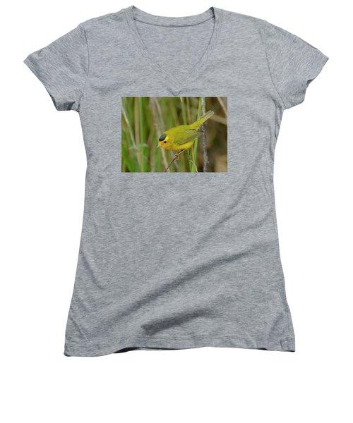 Women's V-Neck T-Shirt (Junior Cut) featuring the photograph Wilson's Warbler by Doug Herr