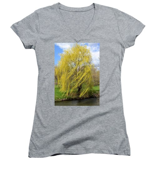Wind In The Willow Women's V-Neck