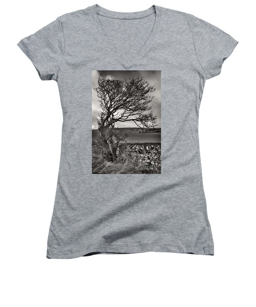 Windswept Tree In Winter Women's V-Neck