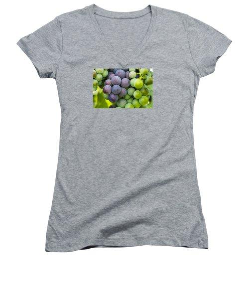 Wine Grapes Close Up Women's V-Neck