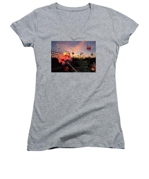 Wings Of Paradise Women's V-Neck T-Shirt