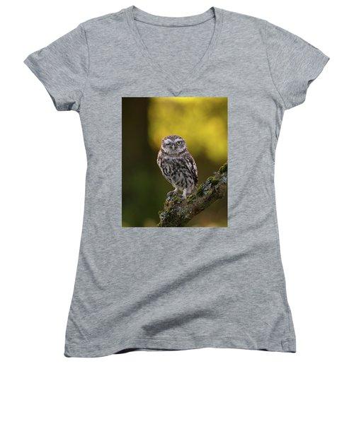 Winking Little Owl Women's V-Neck