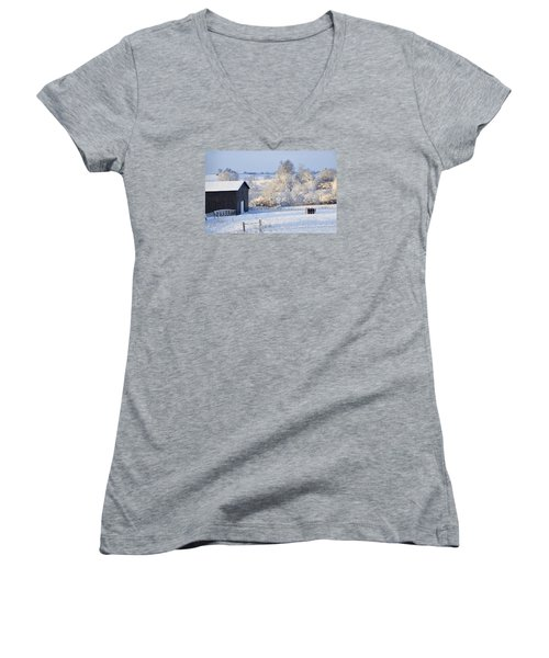 Winter Barn 1 Women's V-Neck