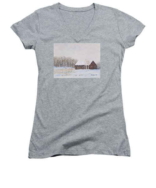 Winter Barn Women's V-Neck T-Shirt