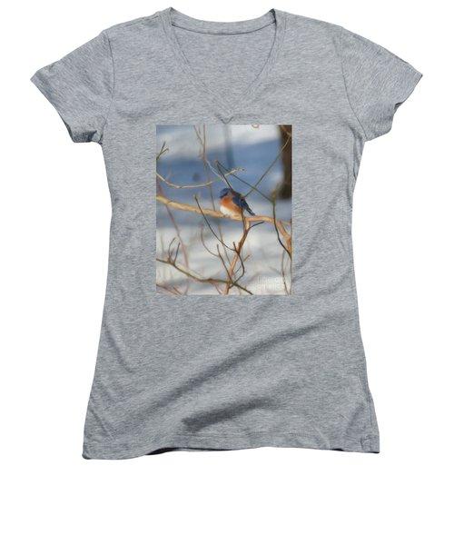 Winter Bluebird Art Women's V-Neck T-Shirt (Junior Cut) by Smilin Eyes  Treasures