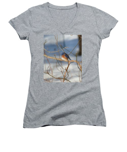 Winter Bluebird Art Women's V-Neck (Athletic Fit)