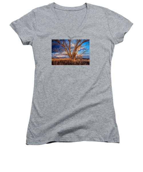 Winter Cottonwood Ranch Landscape Colorado Women's V-Neck T-Shirt (Junior Cut) by John Brink