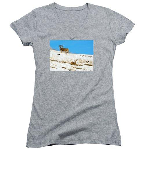 Women's V-Neck T-Shirt (Junior Cut) featuring the photograph Winter Deer by Mike Dawson