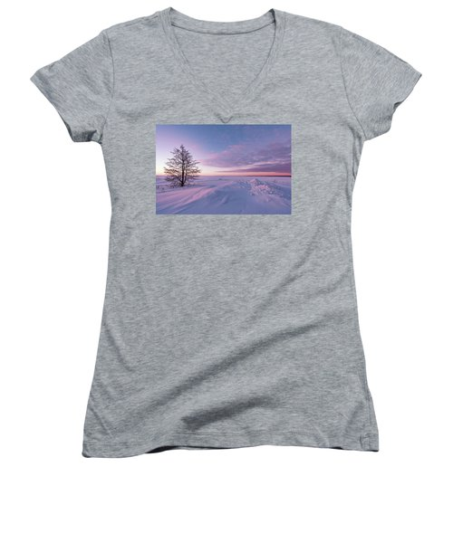 Winter Dreams Women's V-Neck T-Shirt