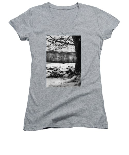 Women's V-Neck T-Shirt (Junior Cut) featuring the photograph Winter Dreary by Bill Wakeley