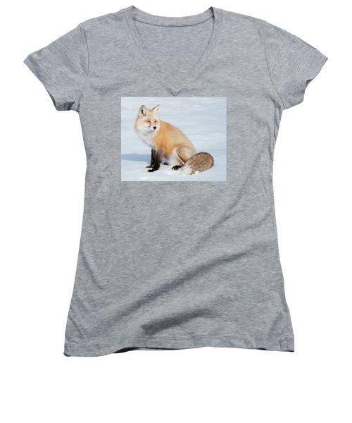 Winter Fox Women's V-Neck