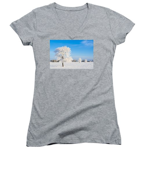 Winter Frostland Women's V-Neck T-Shirt
