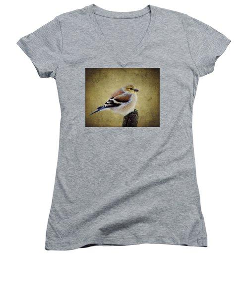 Winter Goldfinch Women's V-Neck