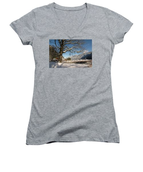 Winter Horseshoe Women's V-Neck T-Shirt (Junior Cut)