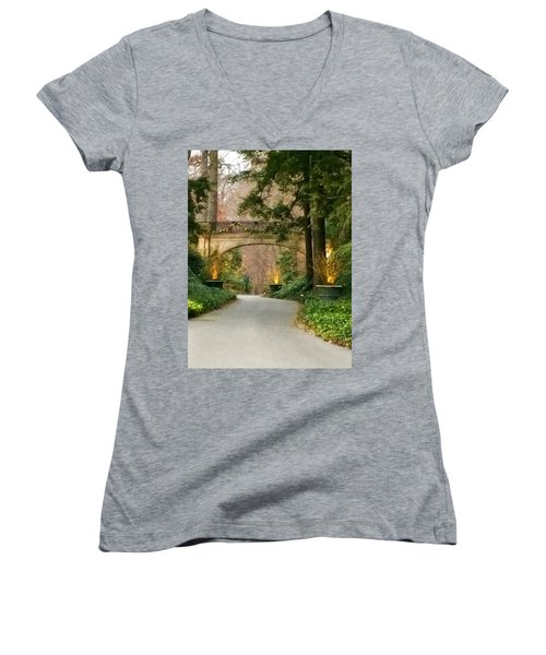 Winter In The Garden Women's V-Neck T-Shirt (Junior Cut) by Robin Regan
