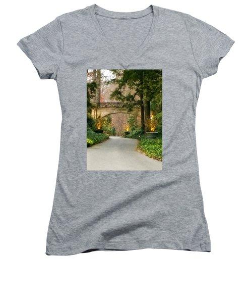 Winter In The Garden Women's V-Neck T-Shirt