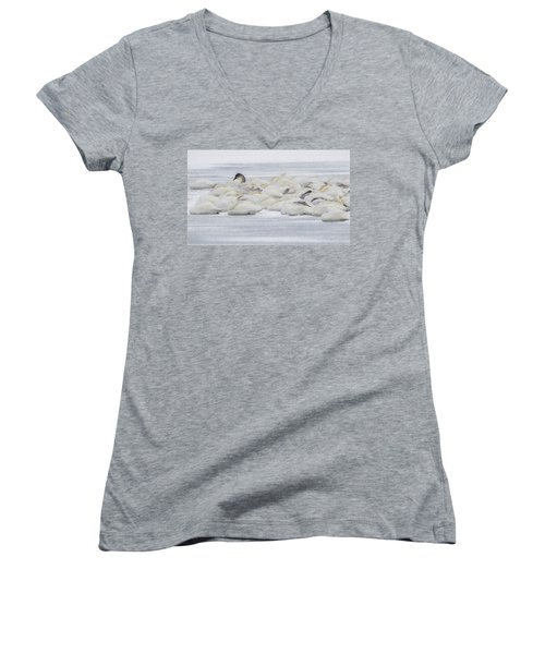 Women's V-Neck T-Shirt (Junior Cut) featuring the photograph Winter by Kelly Marquardt