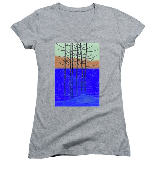 Winter Lake Women's V-Neck