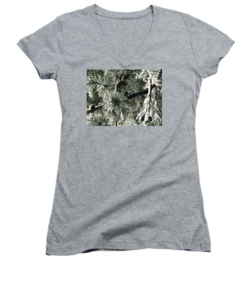 Winter Land  Women's V-Neck