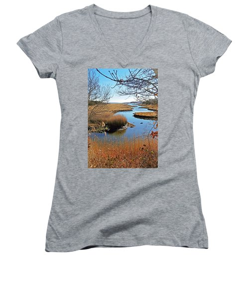 Winter Marsh Women's V-Neck