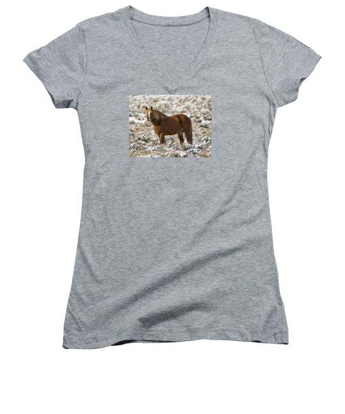 Winter Stallion Women's V-Neck T-Shirt (Junior Cut) by Mitch Shindelbower