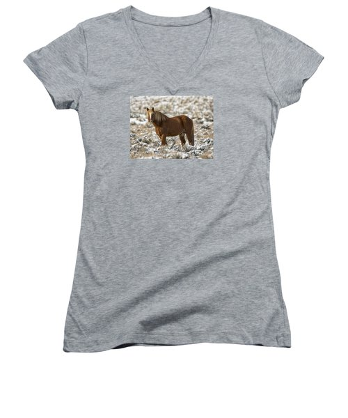 Winter Stallion Women's V-Neck T-Shirt
